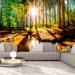Kuvatapetti Artgeist Marvelous Forest, eri kokoja kuva1
