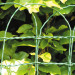 Puutarha-aita Hortus Lux Ursus, 0.4x10m, vihreä kuva1