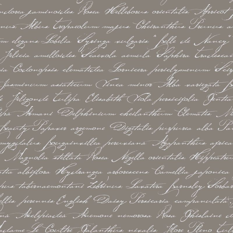 ESTA-Tapetti Handwriting Latin Flower Names 128035 0,53x10,05 m taupe non-woven