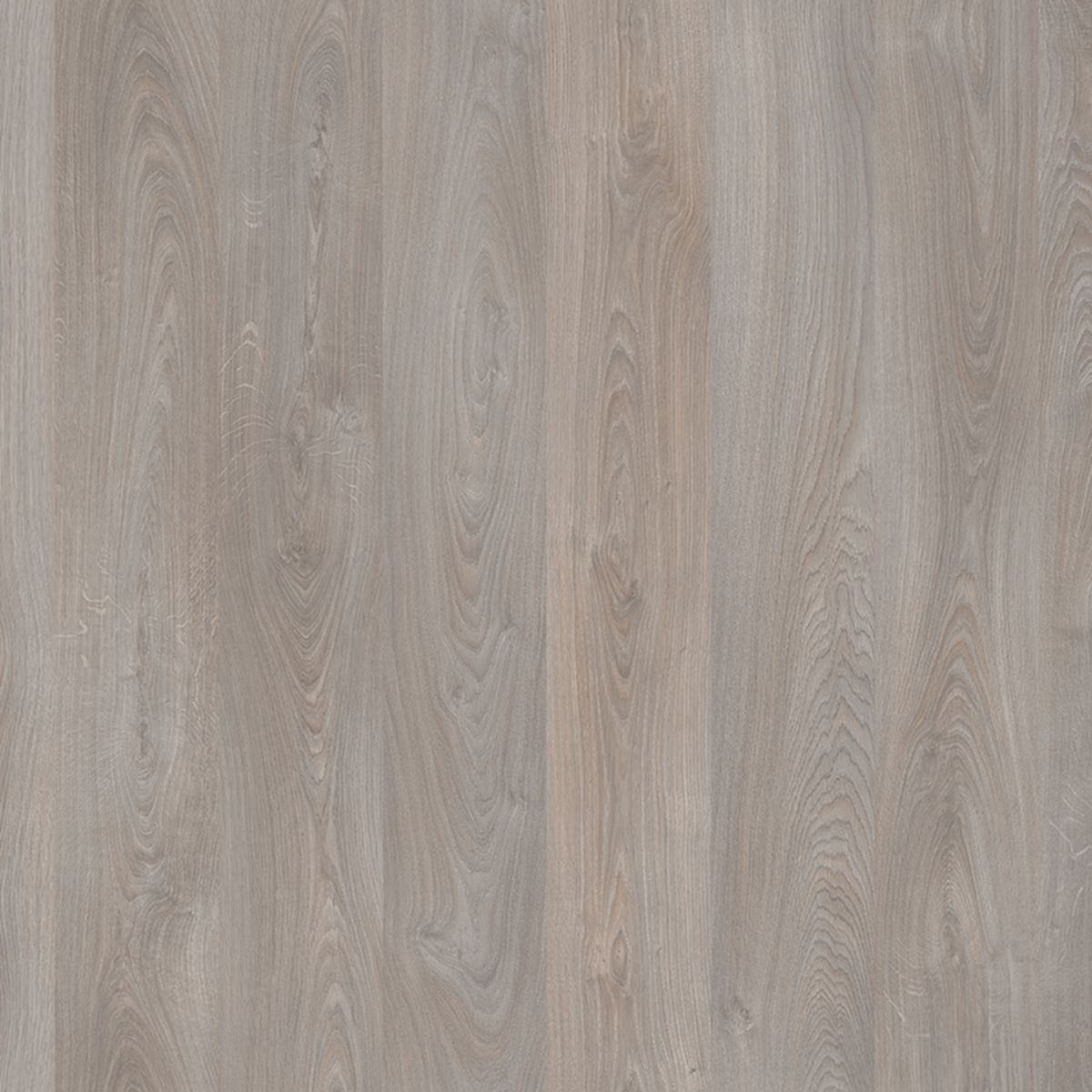 Laminaatti Tarkett Welcome 833 Grey Beige Sherwood Oak, 1-sauva, harmaa (42259288)