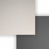 Välitilalevy Aluco, Shampanjahopea/Harmaa, 1220x3650x4mm