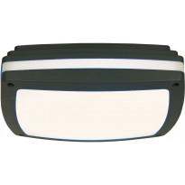 LED-ulkokattoplafondi Aneta Quadro, 30x30cm, IP54, tummanharmaa/valkoinen
