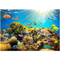 Kuvatapetti Artgeist Underwater Land, eri kokoja