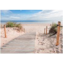 Kuvatapetti Artgeist On the beach, eri kokoja