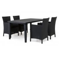 Ruokailuryhmä Liisa Mikaela pöydällä 4 tuolilla grafiitti