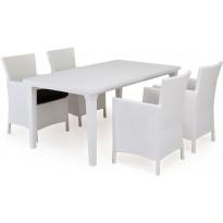 Ruokailuryhmä Liisa Mikaela pöydällä 4 tuolilla, valkoinen