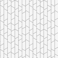 Tapetti Engblad & Co Graphic World, Angle 8821, 0.53x10.05m, valkoinen