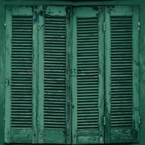 Tapetti Esta Greenhouse 138885, 0,53x10,05m, vihreä/musta