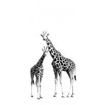 Kuvatapetti PhotowallXL Two Giraffes 158701 1395x2790 mm