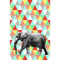 Kuvatapetti PhotowallXL Elephant Multi 158707 1860x2790 mm