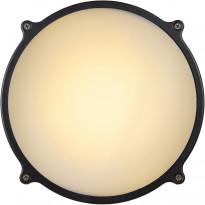Ulkoseinävalaisin Lucide Hublot LED, Ø24.5 cm, 1x20W, IP65, antrasiitti