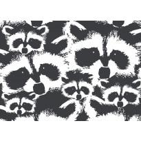 Käsipyyhe Finlayson Pesue, 50x70cm, musta/valkoinen
