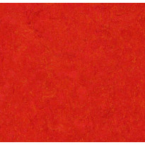 Linoleumilaatta Forbo Marmoleum Click Scarlet, 30x30cm, punainen