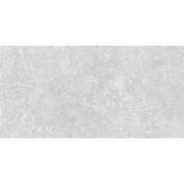 Lattialaatta GoldenTile Stonehenge, 30x60cm, vaaleanharmaa