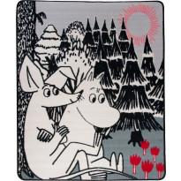 Muumi-matto Hestia Nipsu ja Muumipeikko, 100x120cm, harmaa