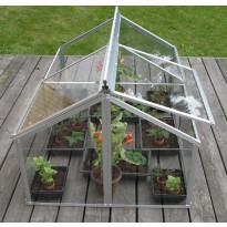 Minikasvihuone Vitavia Gaia Jumbo, 120x80cm, 0,96m², lasilla