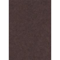 Korkkilattia Wicanders Sophia Onyx, lakkapinta, 10,5x295x905mm