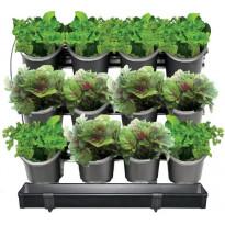 Kasvatusseinä Hortus 12 ruukulla