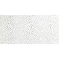 Seinälaatta LPC Sinfonia Blanco, 25x50cm, valkoinen