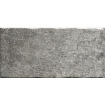 Lattialaatta LPC Toscana Grafiitti, 10x20cm
