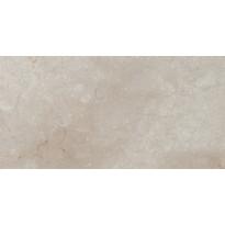 Lattialaatta LPC Temple Harmaa, 50x100cm, kiillotettu
