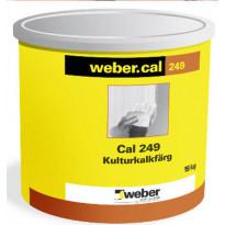 Kulttuuri-/kalkkisementtimaali Weber Serpo-värikartta 17 kg
