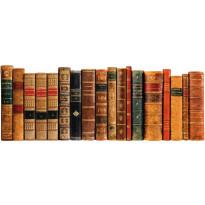 Sängynpäätytarra Kirjat, 160x59cm