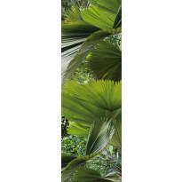 Jääkaappitarra Tropical 59,5x180 cm