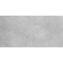 Seinälaatta Pukkila Europe Grey, himmeä, sileä, 397x197mm