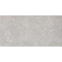 Lattialaatta Pukkila Evoluzione Grigio, puolikiiltävä, sileä, 598x298mm