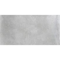 Lattialaatta Pukkila Europe Grey, himmeä, sileä, 598x298mm