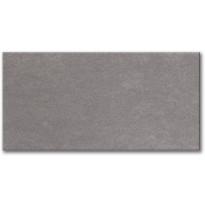 Lattialaatta Pukkila Tellus Janus Medium Grey, himmeä, sileä, 596x296mm