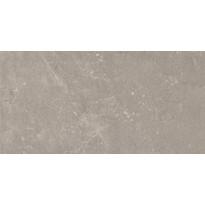 Seinälaatta Pukkila Piazen Ash, himmeä, sileä, 600x300mm