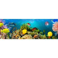 Valokuvatapetti Idealdecor, Sea Corals 4-osaa, 00860 366x127 cm, non-woven
