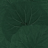 Tapetti ESTA Jungle Fever 138997, 0.53x10.05m, non-woven, vihreä