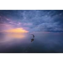 Valokuvatapetti Idealdecor Digital Wetland Sunrise 4-osaa, 5092-4V-1, 254x368cm
