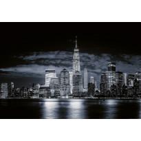 Valokuvatapetti Idealdecor Digital Skyline Of Manhattan 4-osaa, 5108-4V-1, 254x368cm