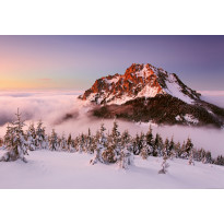 Valokuvatapetti Idealdecor Digital Snowy Mountain Peak 4-osaa, 5131-4V-1, 254x368cm