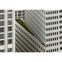Valokuvatapetti Idealdecor Digital Architecture White High-Rise Building 4-osaa, 5140-4V-1, 254x368cm