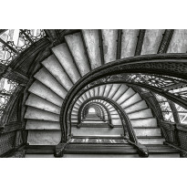 Valokuvatapetti Idealdecor Digital Old Stairs 4-osaa, 5144-4V-1, 254x368cm