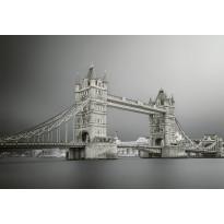 Valokuvatapetti Idealdecor Digital Tower Bridge London 4-osaa, 5145-4V-1, 254x368cm