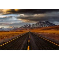 Valokuvatapetti Idealdecor Digital Road Atacama 4-osaa, 5150-4V-1, 254x368cm