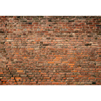 Valokuvatapetti Idealdecor Digital Brick Wall Red 4-osaa, 5195-4V-1, 254x368cm