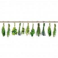 Välitilatarra Dimex Herbs, 180-350x60cm