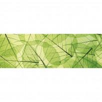 Välitilatarra Dimex Leaf Veins, 180-350x60cm