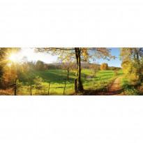 Välitilatarra Dimex Meadow, 180-350x60cm