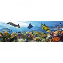 Välitilatarra Dimex Fish, 180-350x60cm