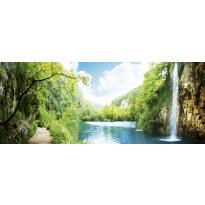 Kuvatapetti Dimex Rela In Forest, 375x150cm