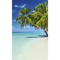 Kuvatapetti Dimex Paradise Beach, 150x250cm