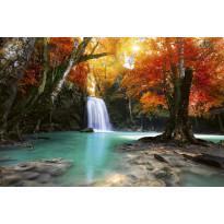 Kuvatapetti Dimex Deep Forest Waterfall, 375x250cm